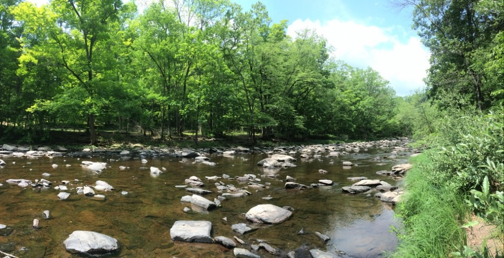 tohickon_creek
