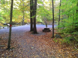 The main trails are paved, making the Intermediate-level hills accessible for beginning hikers