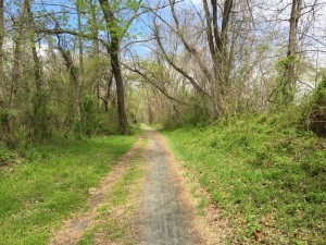 The Delaware and Raritan Canal to Bordentown