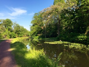 The Delaware Canal State Park (PA).