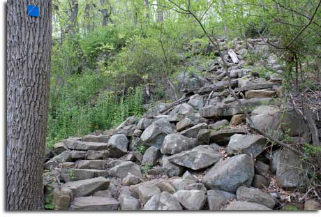 Stone steps carved into Summit Trail