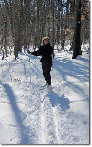 XC Skiing at Clayton Park