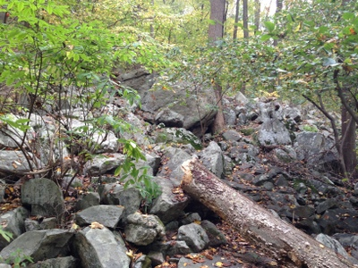 Part of the Point Mountain trail winds through an ancient rock fall.