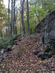 The white blazed, Stoneface trail climbs about 80 feet along an entertaining, switchbacked trail