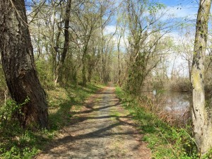 Delaware and Rarity Canal to Bordentown