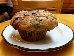 The blueberry muffin