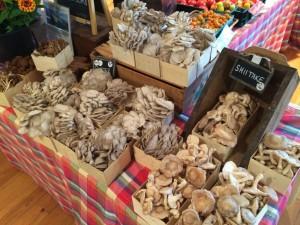 Mushrooms exotic